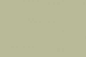 vakolat és festék szín, zöld